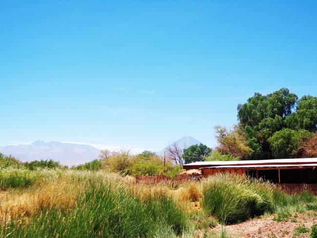 Camping Quilarcay san pedro de atacama