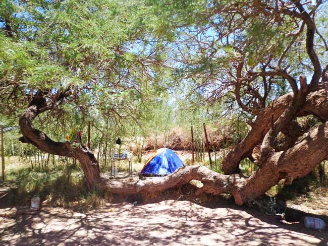 Quilarcay camping san pedro de atacama
